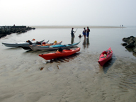 Sea Kayaking Level 4.jpg
