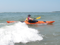 Sea Kayak Surfing.jpg