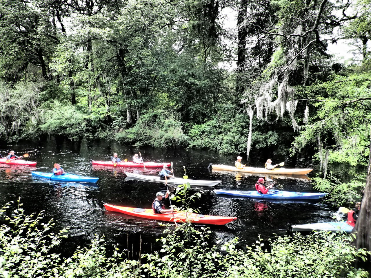 Ebenezer Creek Kayak Trip.JPG