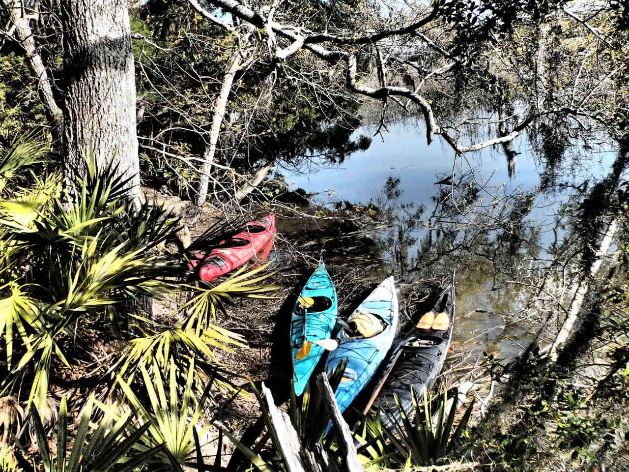 Savannah Kayak Skidaway River.jpg