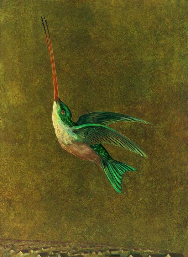 """""""Audubon's Hummingbird"""""""