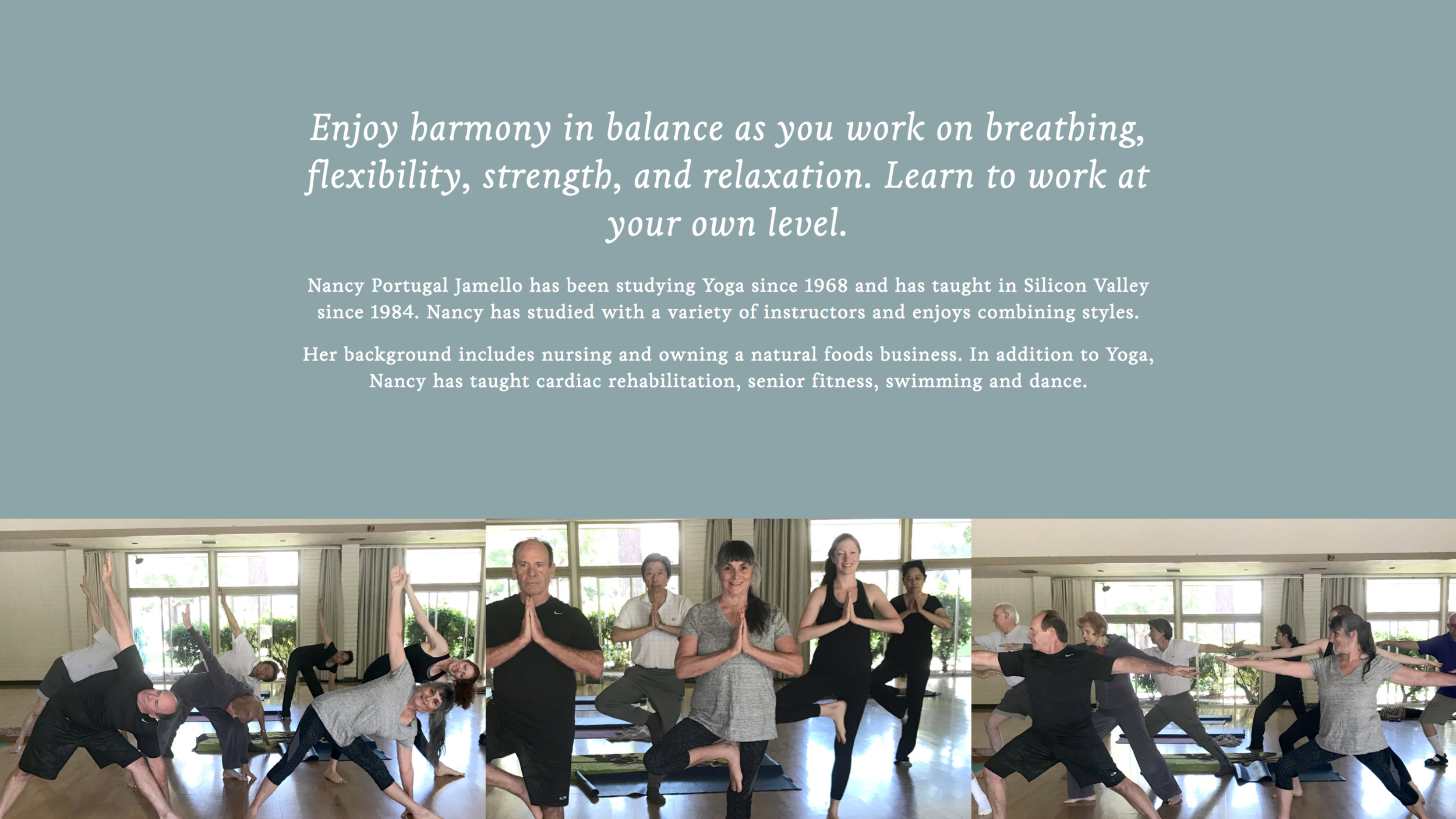 Yoga with Nancy Website 02.png