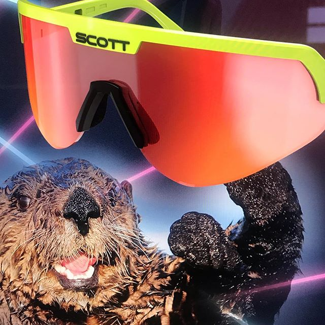 It's @seaotterclassic season at @scottsports  @bikeonscott #sportshield #seaotter #lasers