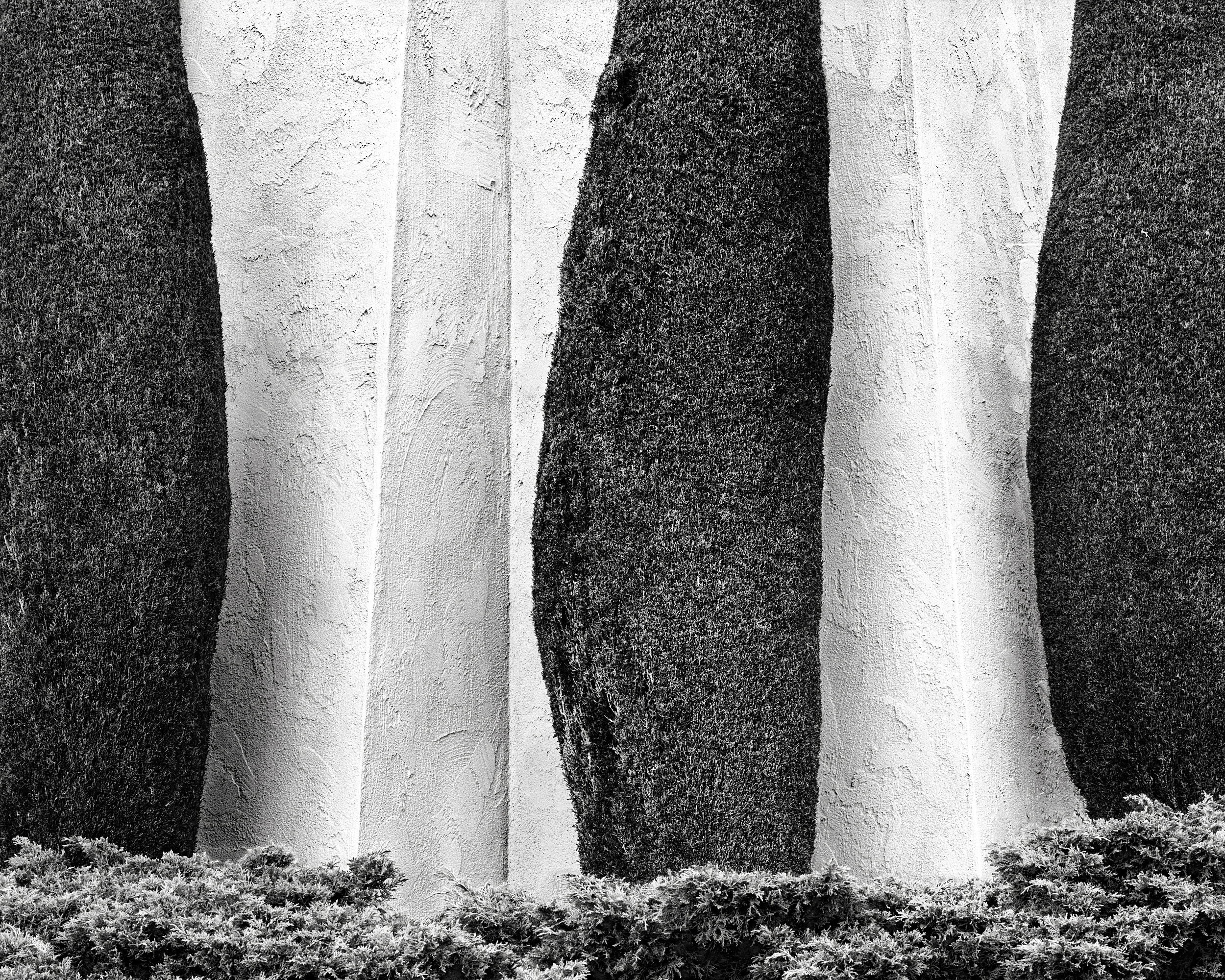 Cypress and Stucco, 1988