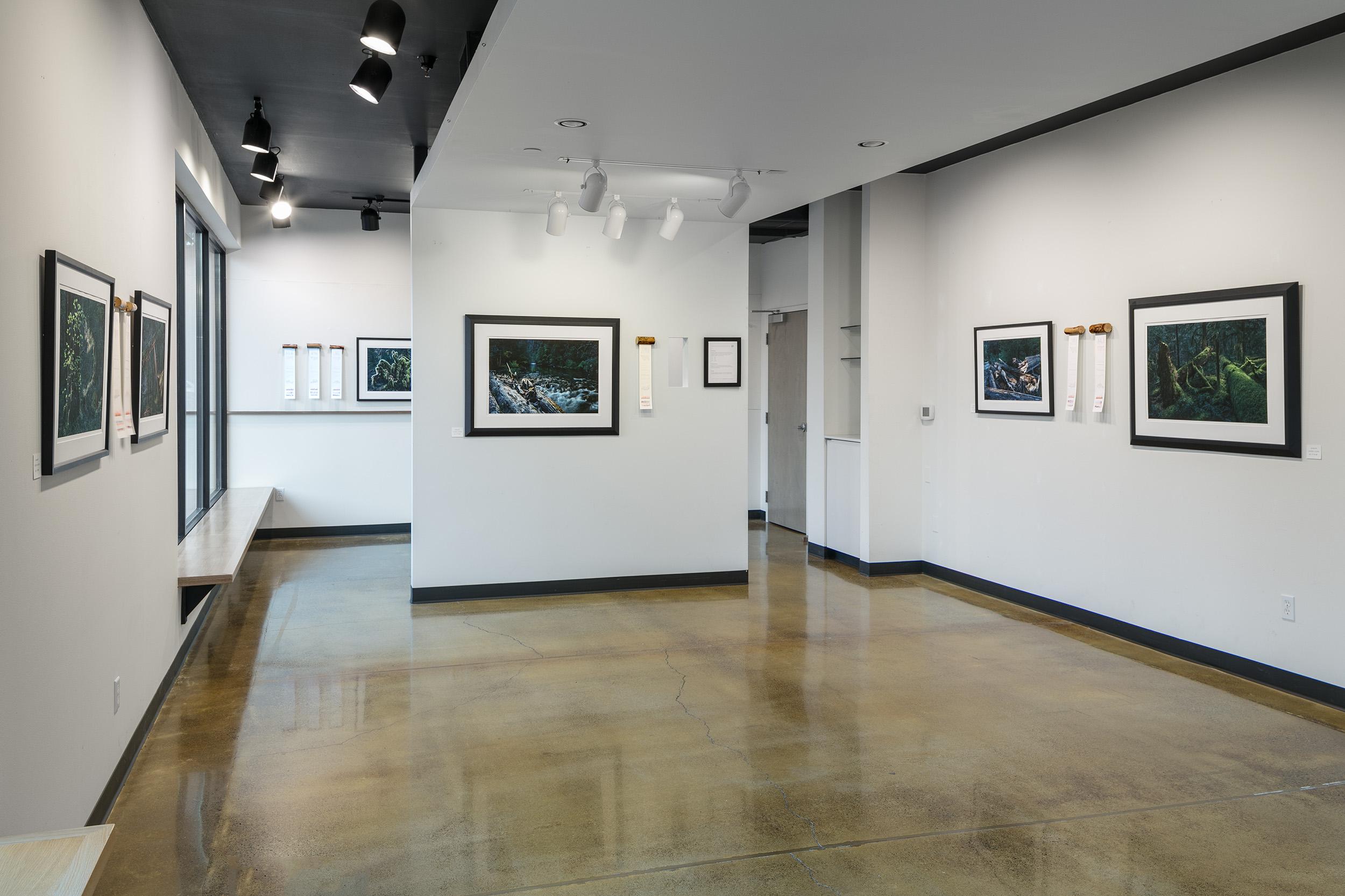 Truckenbrod Gallery