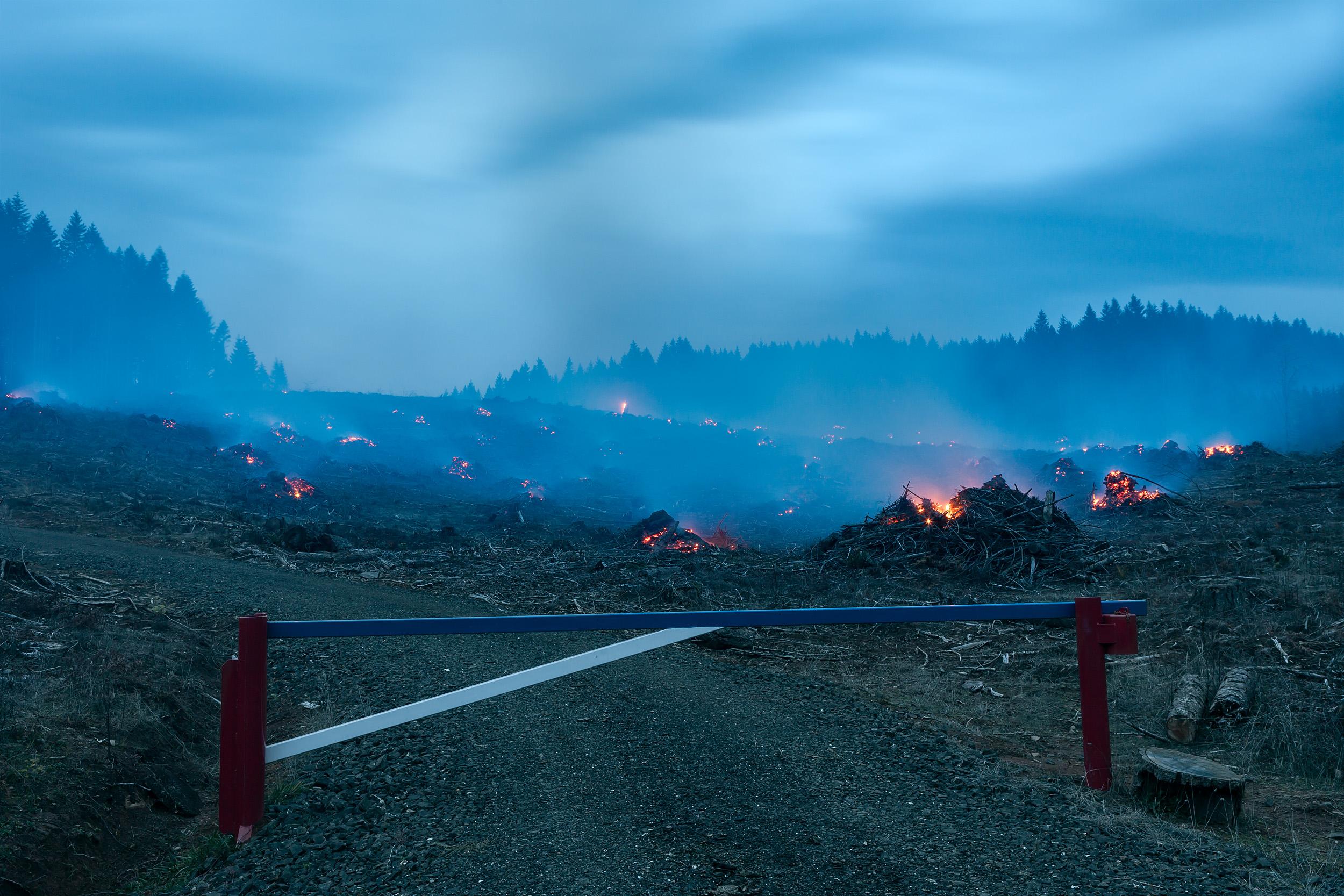 Burn #266, 2009
