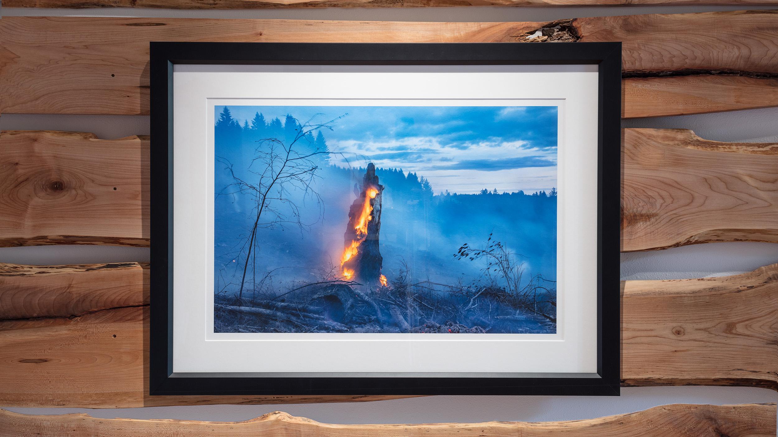Elder on Fire, 2009, 24 x16 ed. of 7