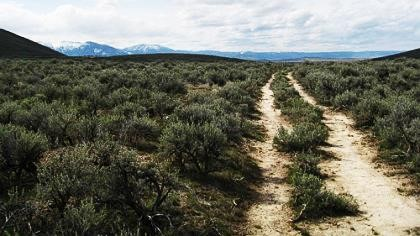 A portion of historic Oregon Trail, (Vernacular Landscape), Photo Courtesy of post-gazette.com