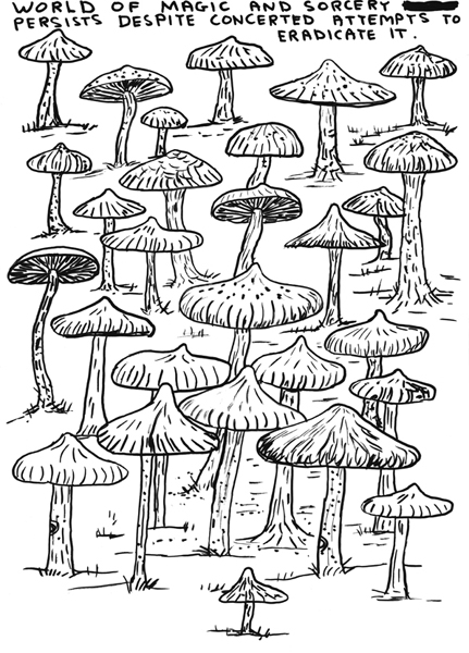 Shrigley shrooms.jpg