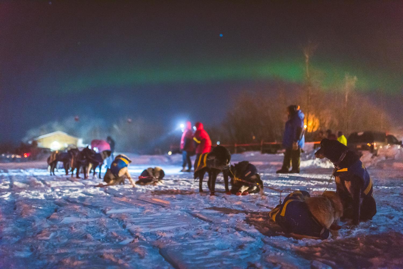 Chance Mclaren Photography_Hugh Neff-Arrival_Circle_Yukon Quest 2017-9.jpg
