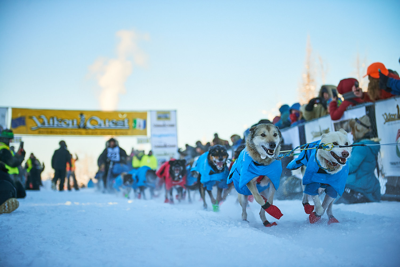 Yukon-Quest-Sled-Dog-Race-Photography-Alaska-Yukon-Chance-McLaren-Photography-06.jpg