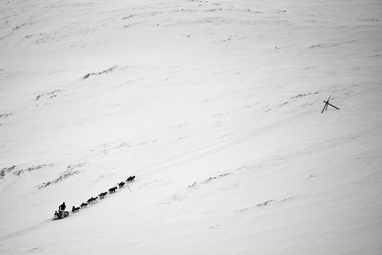 Yukon-Quest-Sled-Dog-Race-Photography-Alaska-Yukon-Chance-McLaren-Photography-14.jpg
