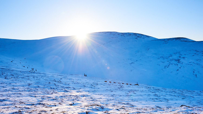 Yukon-Quest-Sled-Dog-Race-Photography-Alaska-Yukon-Chance-McLaren-Photography-15.jpg