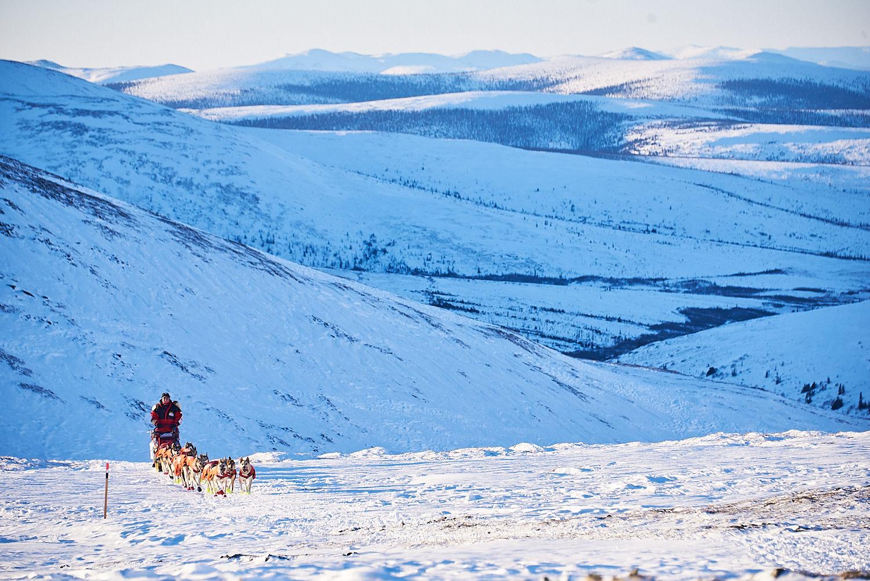 Yukon-Quest-Sled-Dog-Race-Photography-Alaska-Yukon-Chance-McLaren-Photography-16.jpg