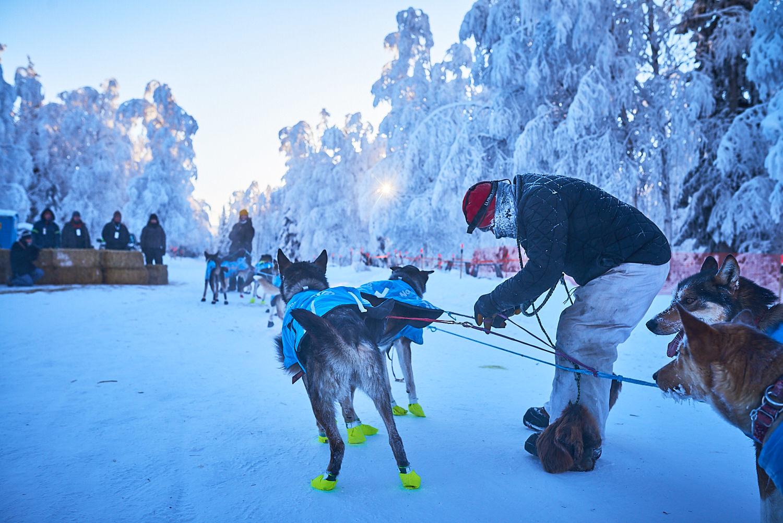 Yukon-Quest-Sled-Dog-Race-Photography-Alaska-Yukon-Chance-McLaren-Photography-17.jpg