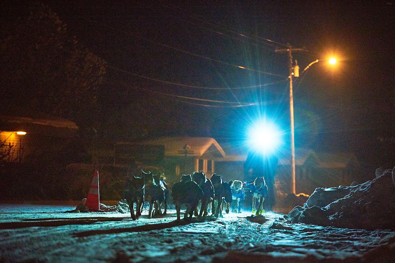 Yukon-Quest-Sled-Dog-Race-Photography-Alaska-Yukon-Chance-McLaren-Photography-23.jpg