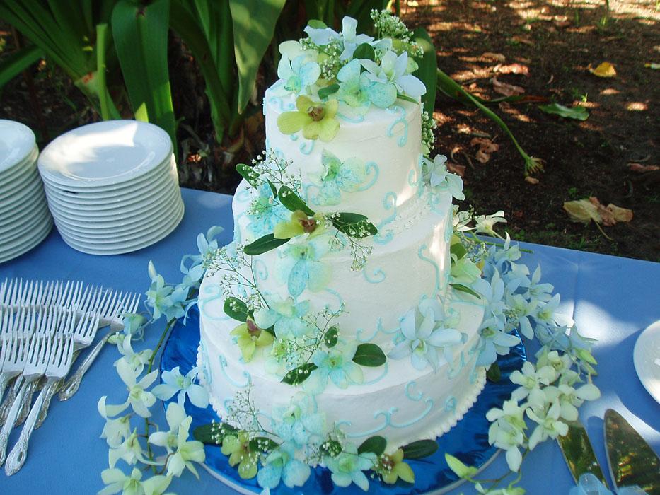 For Allison Oct 29th 2012.jpg