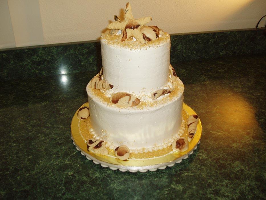 shell-cakes1.jpg