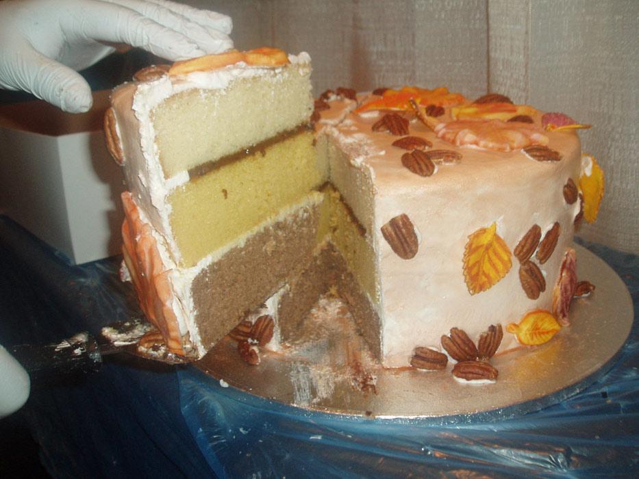 cakeslice19.jpg