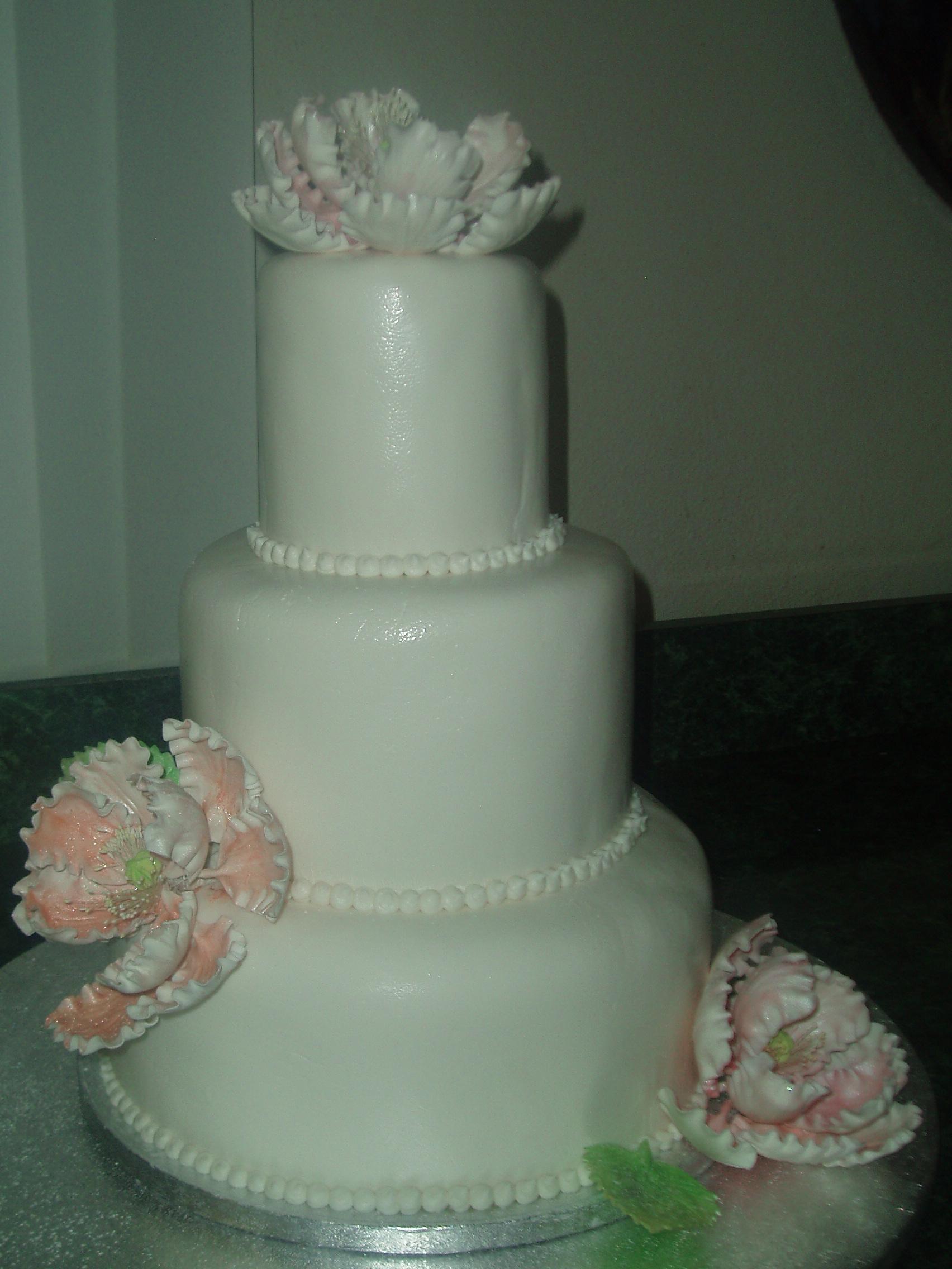 Cakes 006.JPG