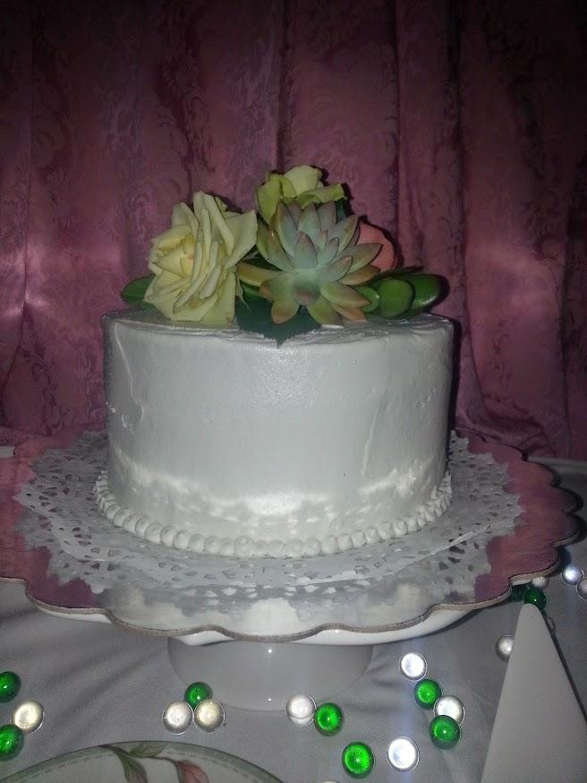 succulent1t.jpg