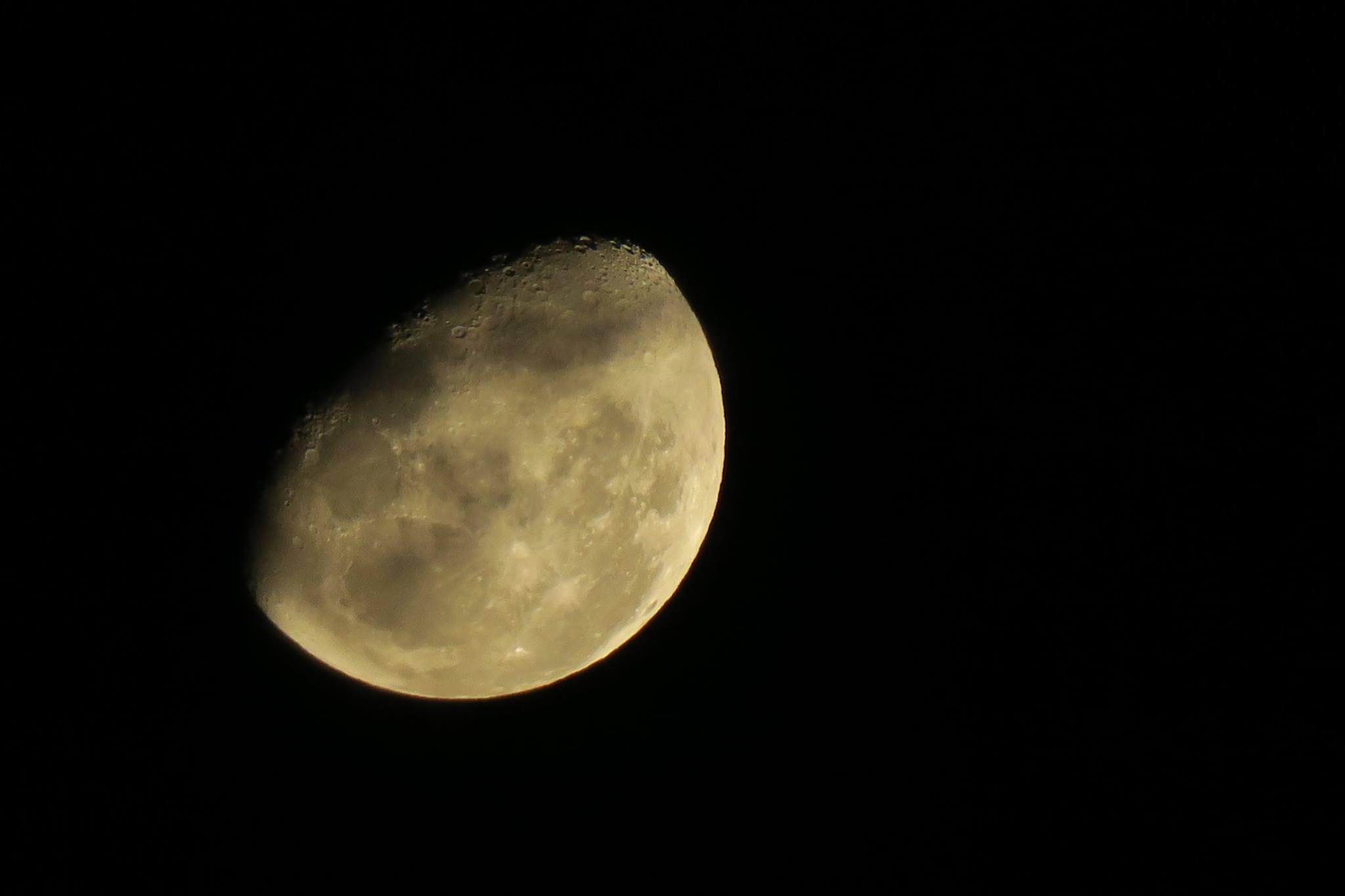 月もきれいに見えました。