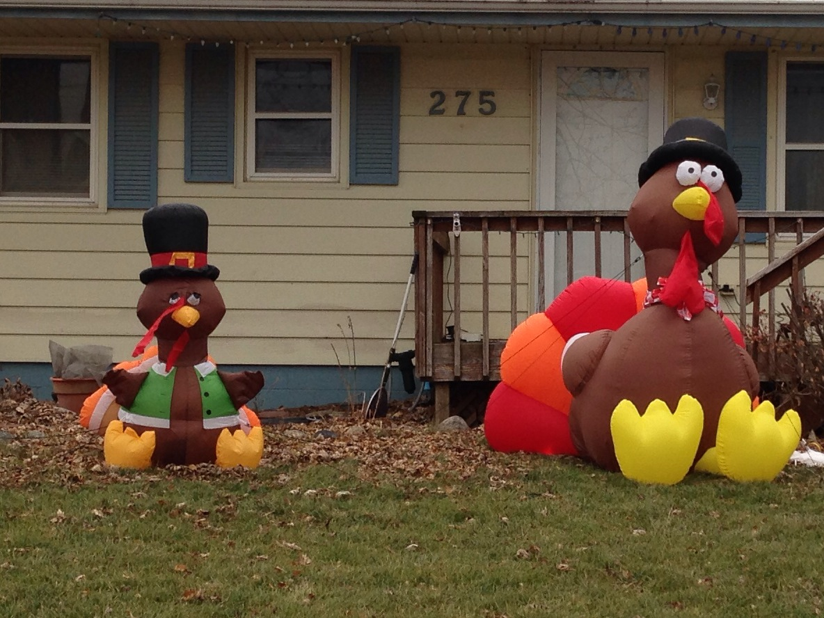 A Couple of Gobblers