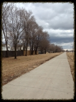 Iowa-Bike-Rides-Trail.JPG