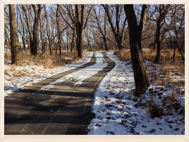 Iowa-Bike-Rides-Trailside Trees.JPG