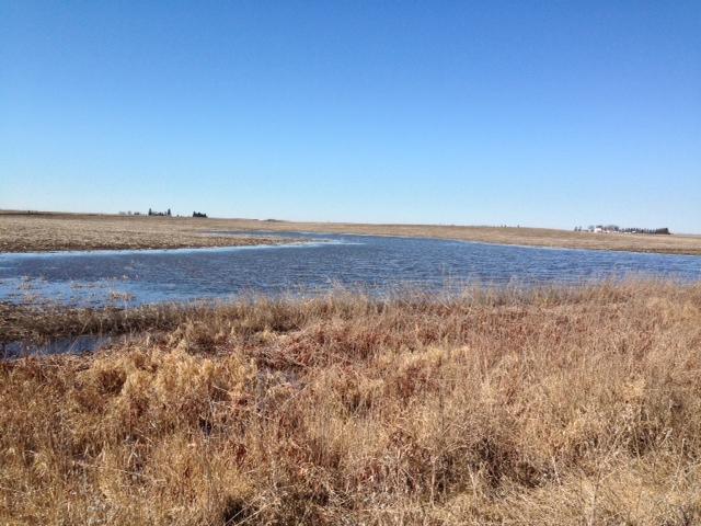 Snow Melt Ponds