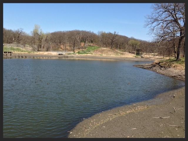 Ashworth Memorial Pond.jpg
