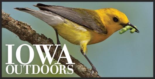 Picture: Iowa DNR
