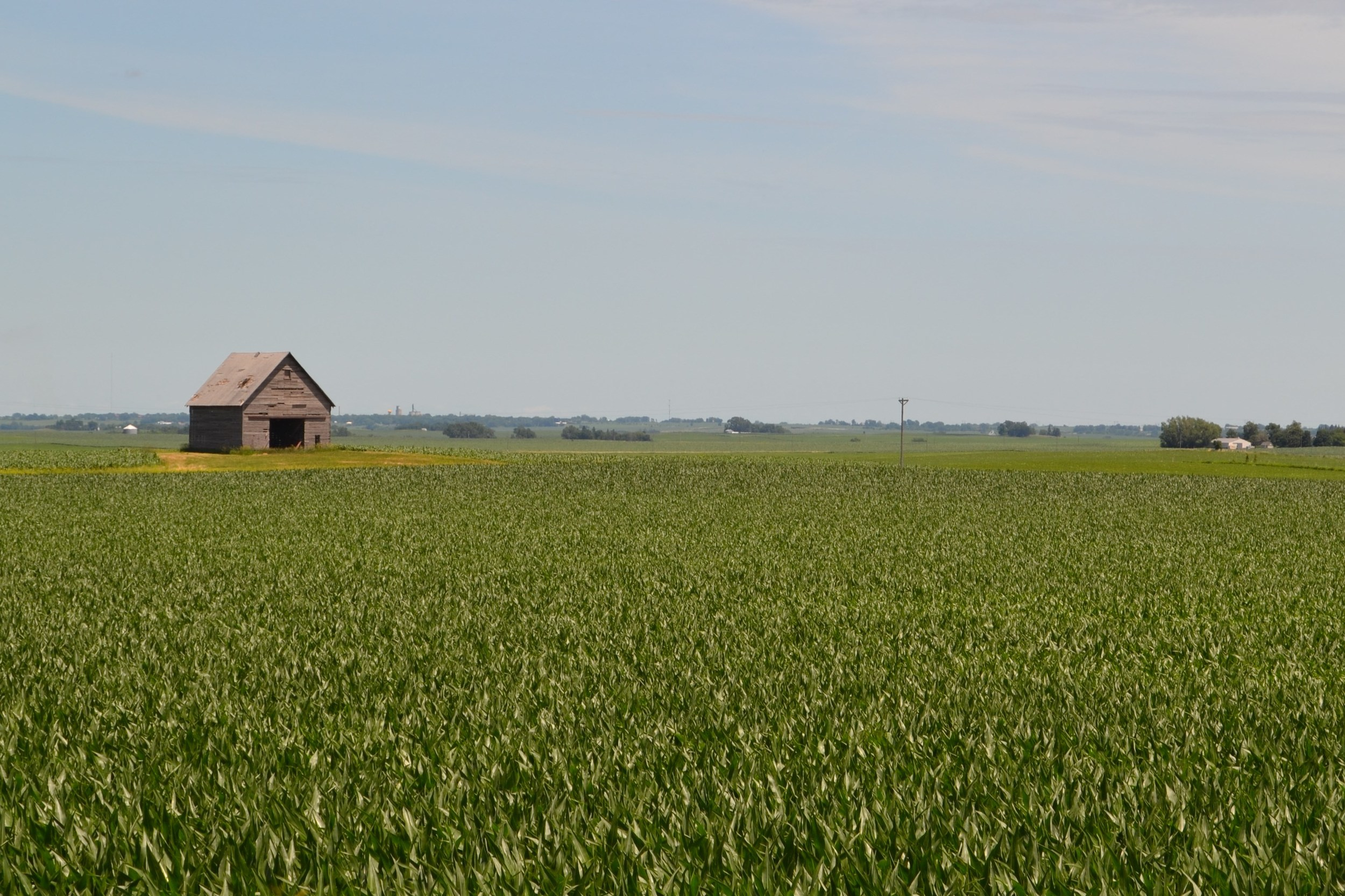 Farm Photo Op