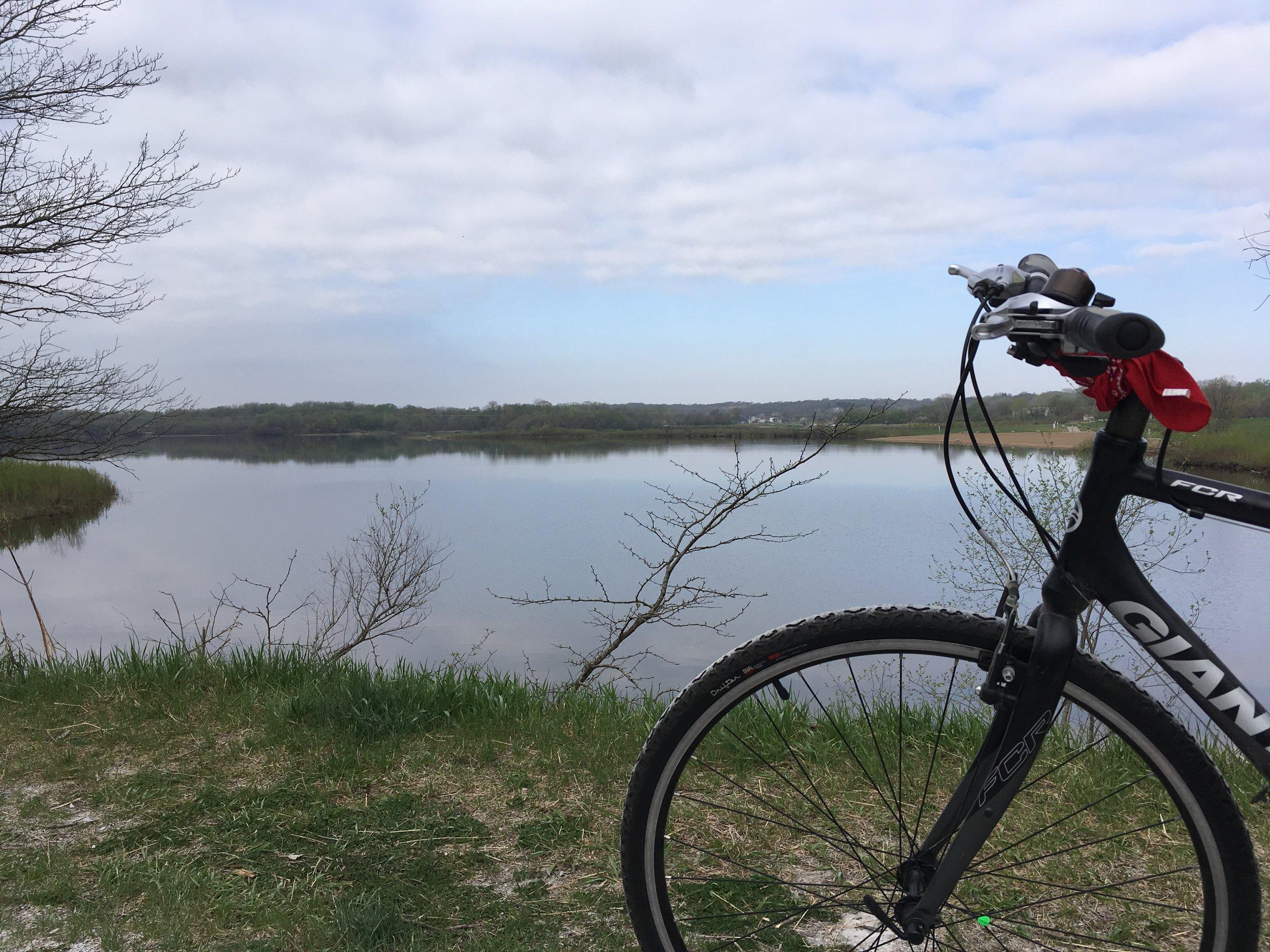 Day 24:  Blue Heron Lake at Raccoon River Park