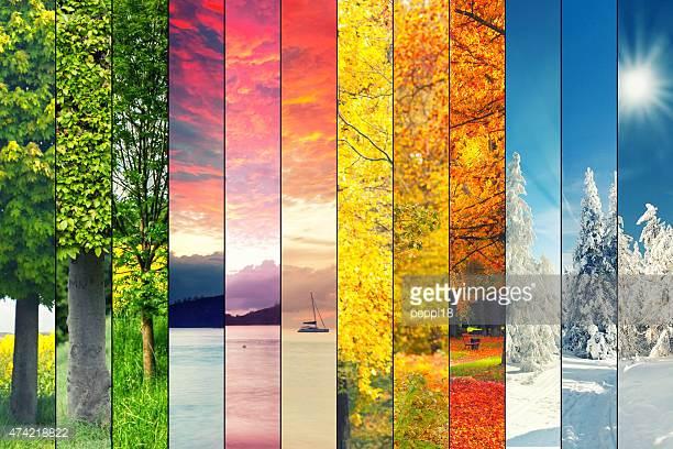 Seasonal -