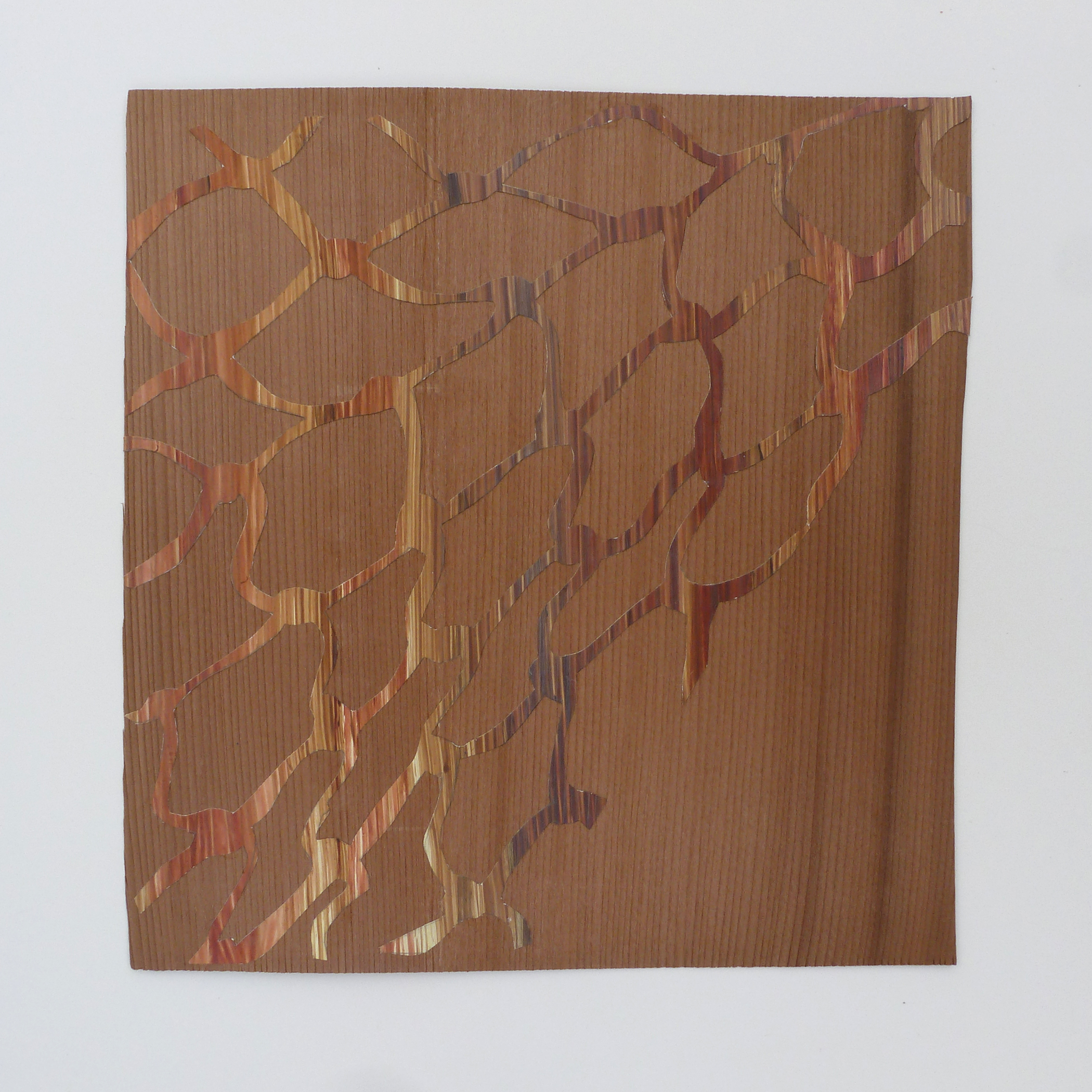 "Wood on Wood,  2014, hand-cut acrylic on paper, mahogany veneer, H 8"" x W 8"""