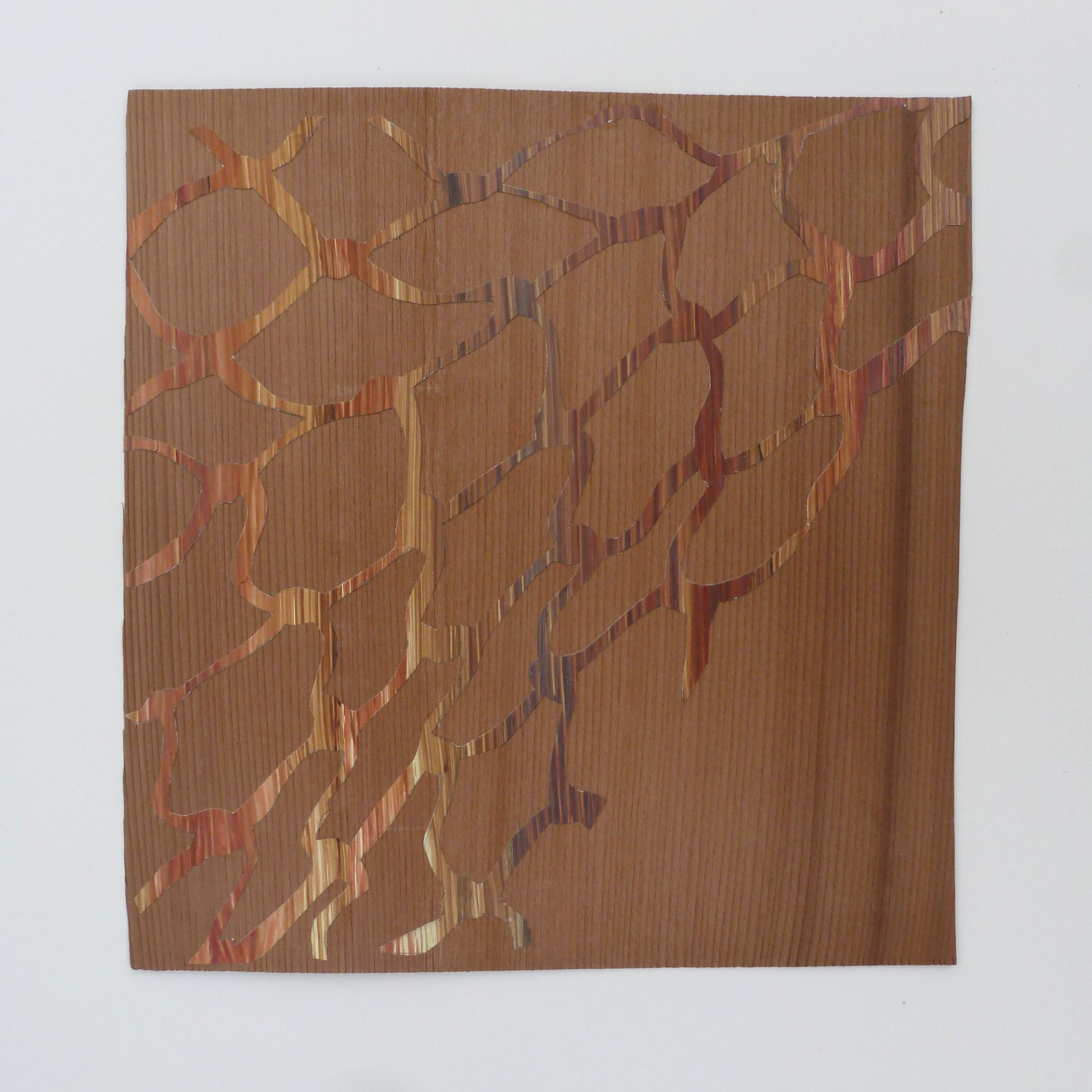 "Wood on Wood, 2014, hand-cut acrylic on paper, mahogany veneer, H 8"" x W 8"""