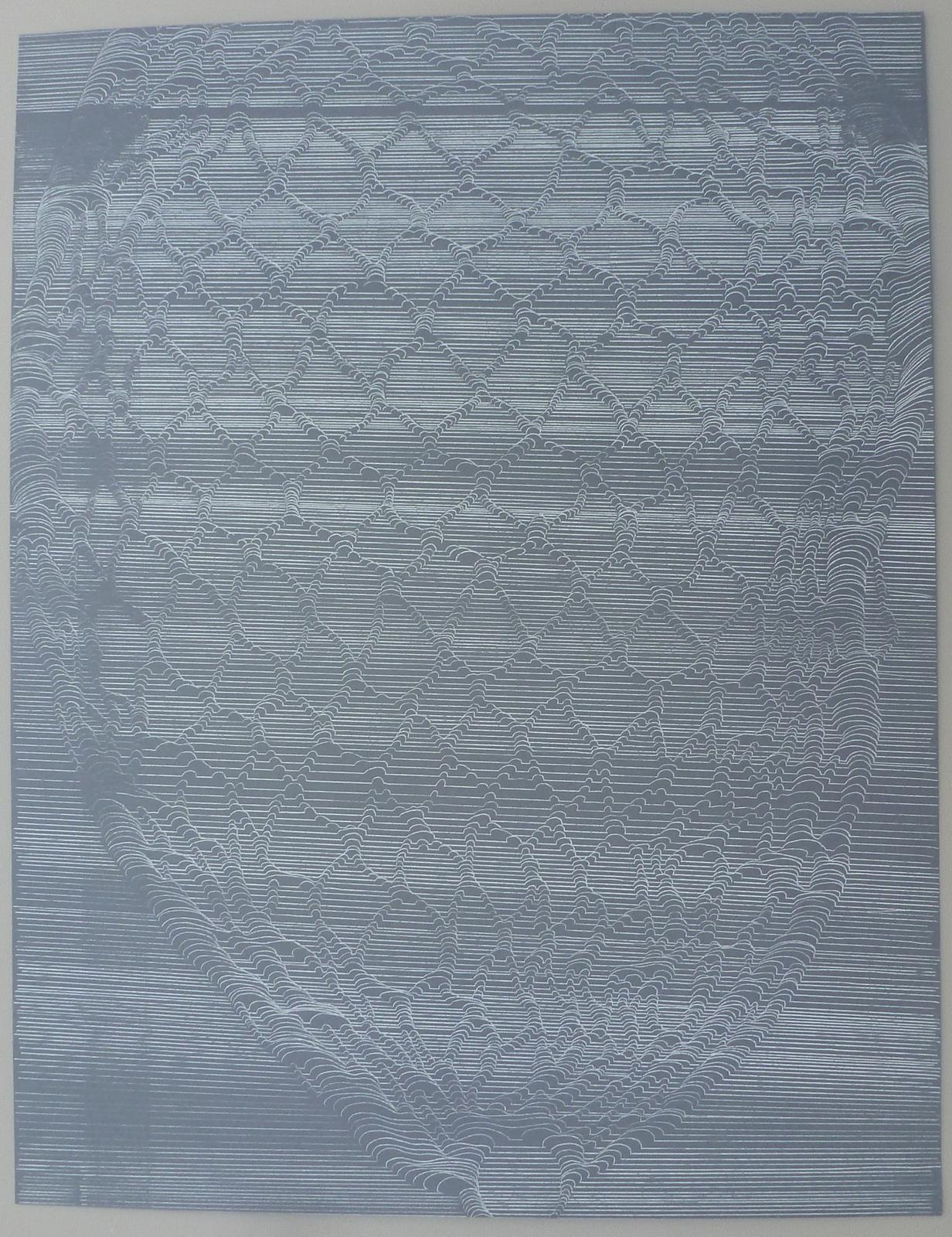 "White Net #3 , 2014, white transfer on paper, H 19.5"" x W 25.5"""