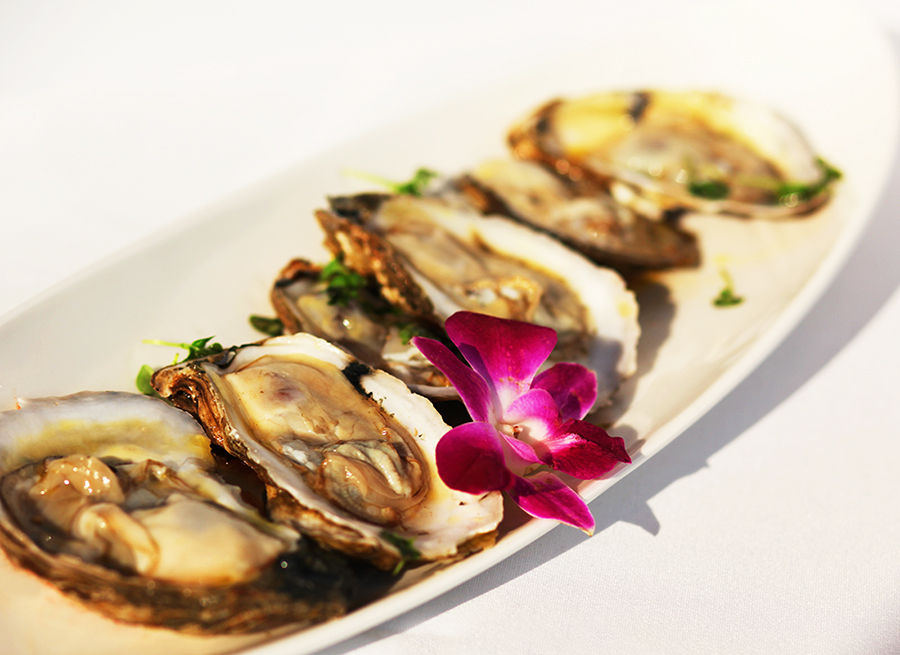 Oysters02.jpg