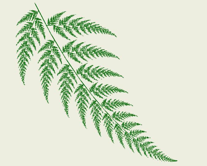 Fractal Ferns - Example 1