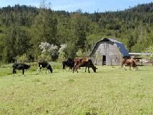 farm_1.7.4.png