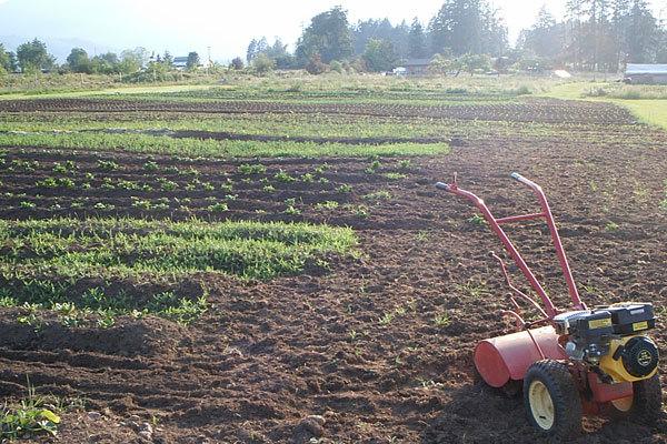 farm_1.6.4.jpg