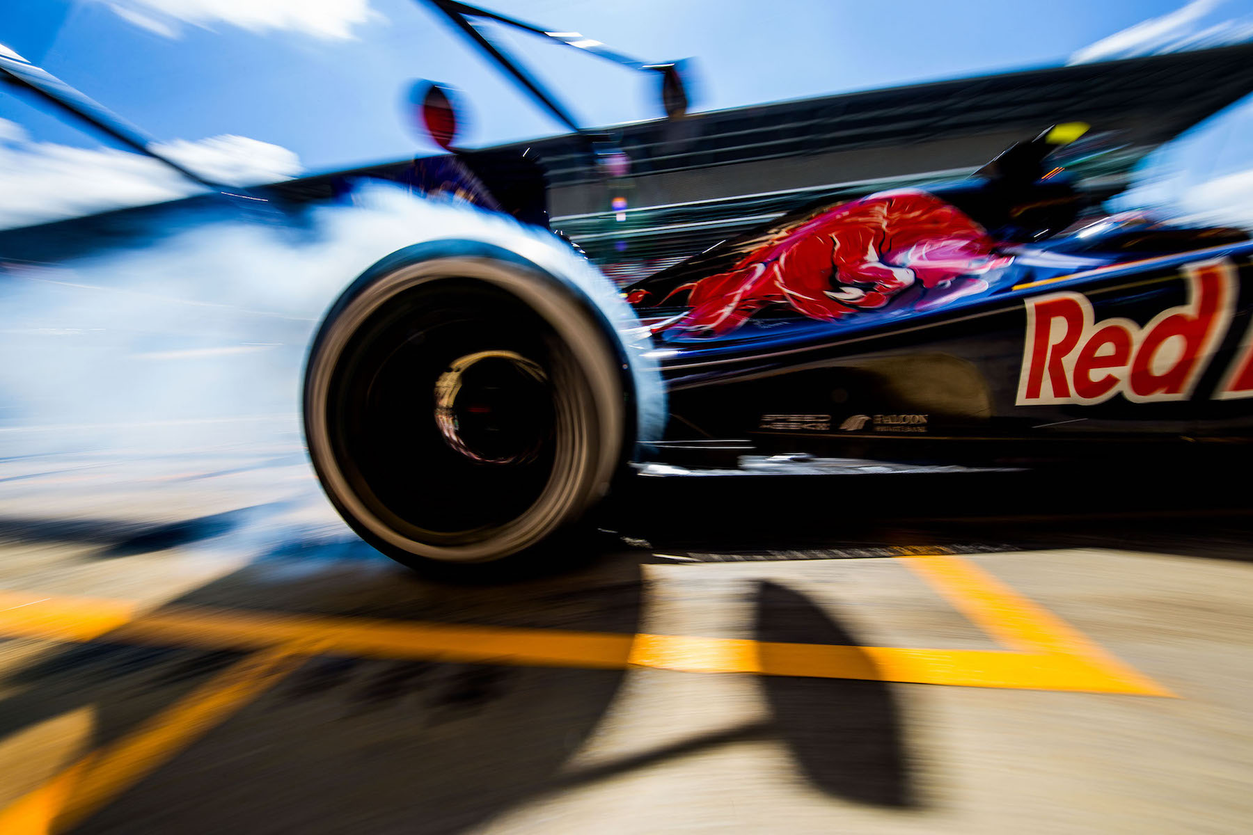 Salracing   Scuderia Toro Rosso