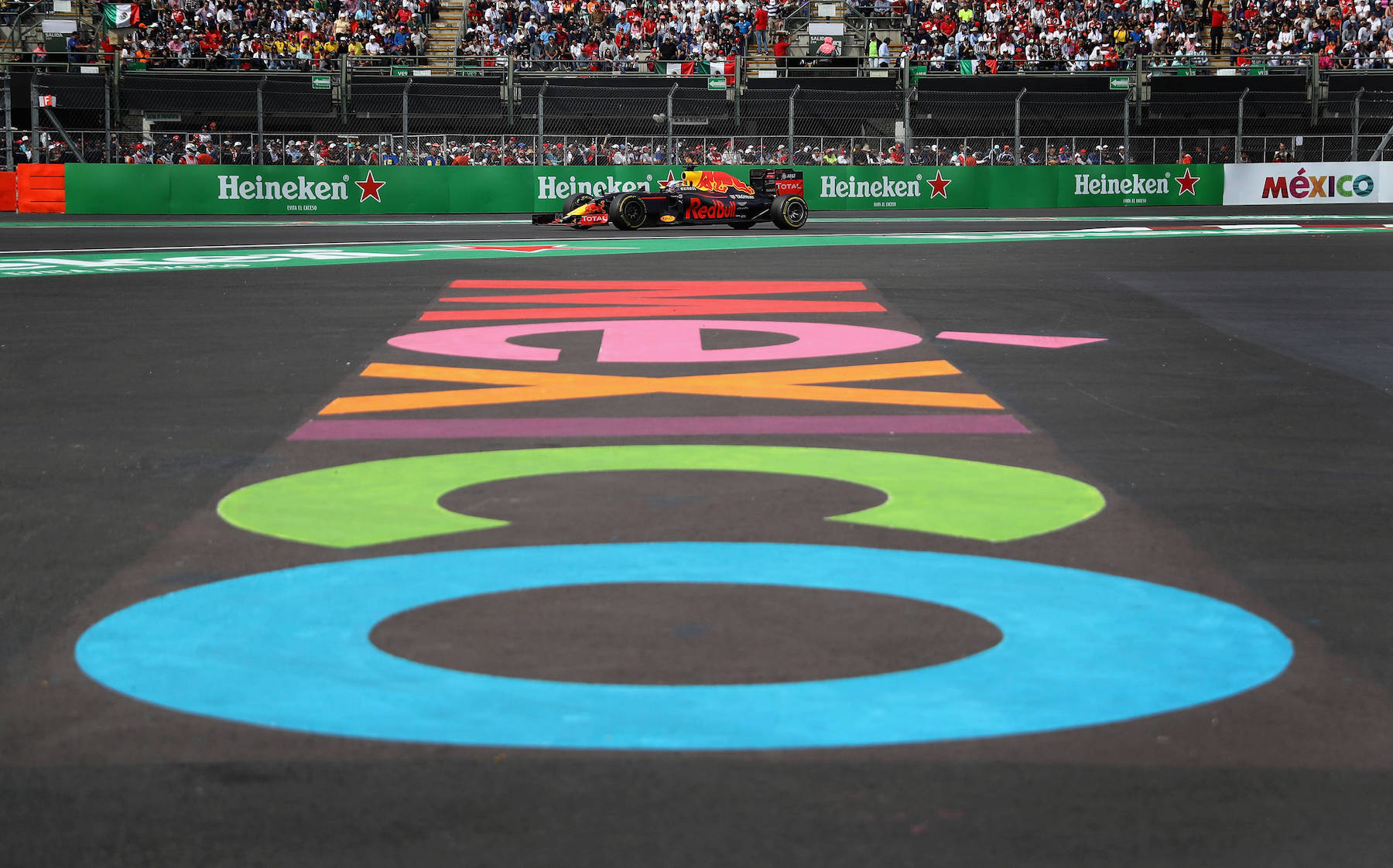 Salracing - Daniel Ricciardo   Red Bull Racing