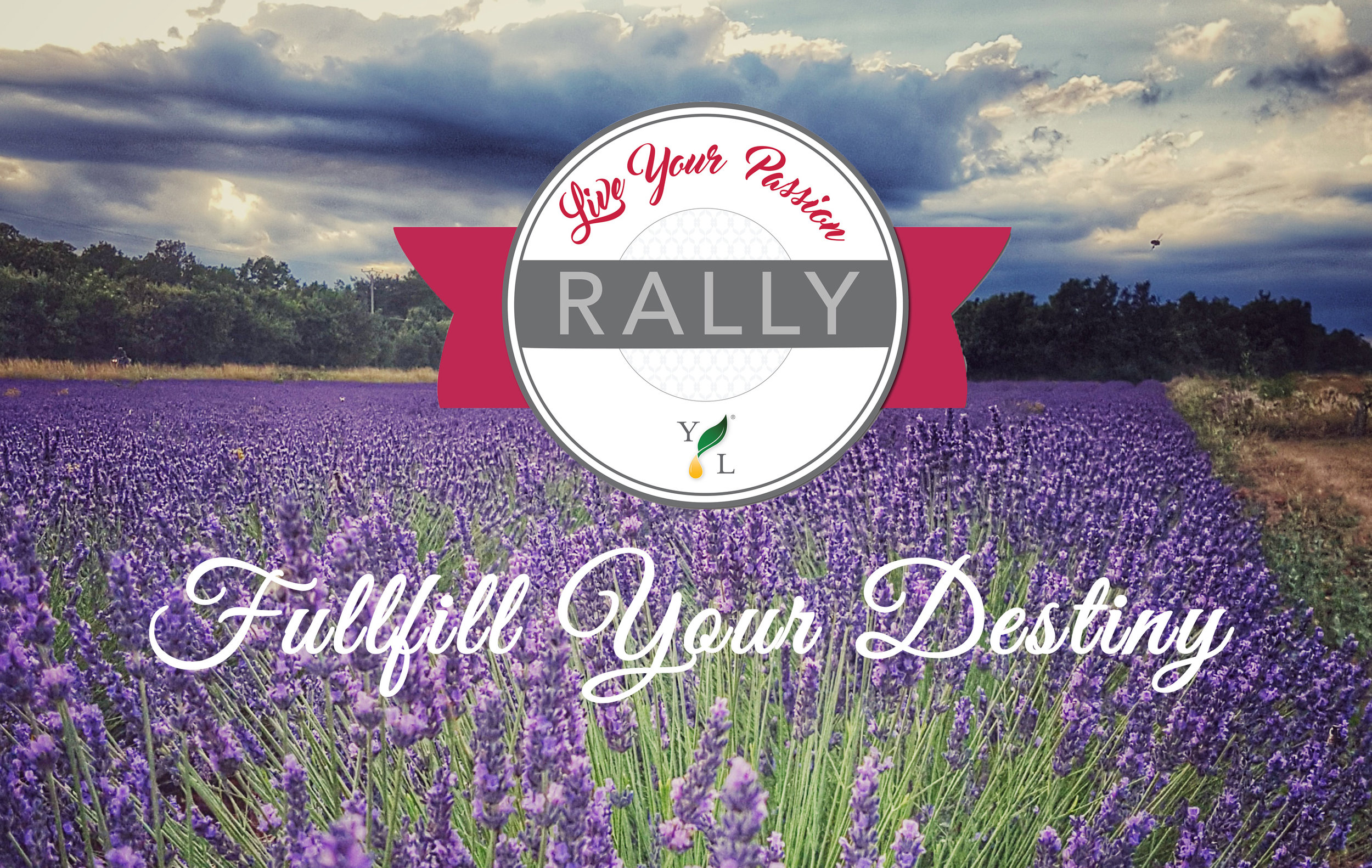 NO-yl-rally-lavender-field.jpg