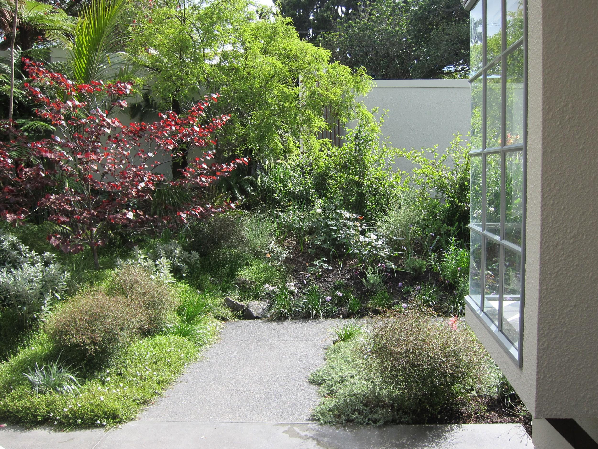 epsom-garden-2.jpg