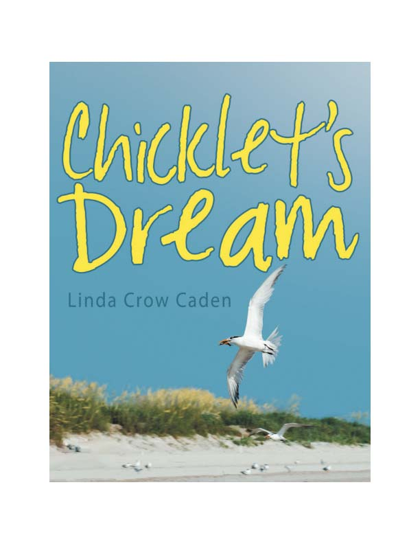 Chicklet is an endearing little Royal Tern with a vivid imagination and a huge appetite. As he searches for something to eat, he encounters new places and animals along the way. It's a curious, exciting, and sometimes scary trip, but Chicklet is up to the task.    Chicklet's Dream combines beautiful photography with a charming story to introduce children to a variety of shorebirds.