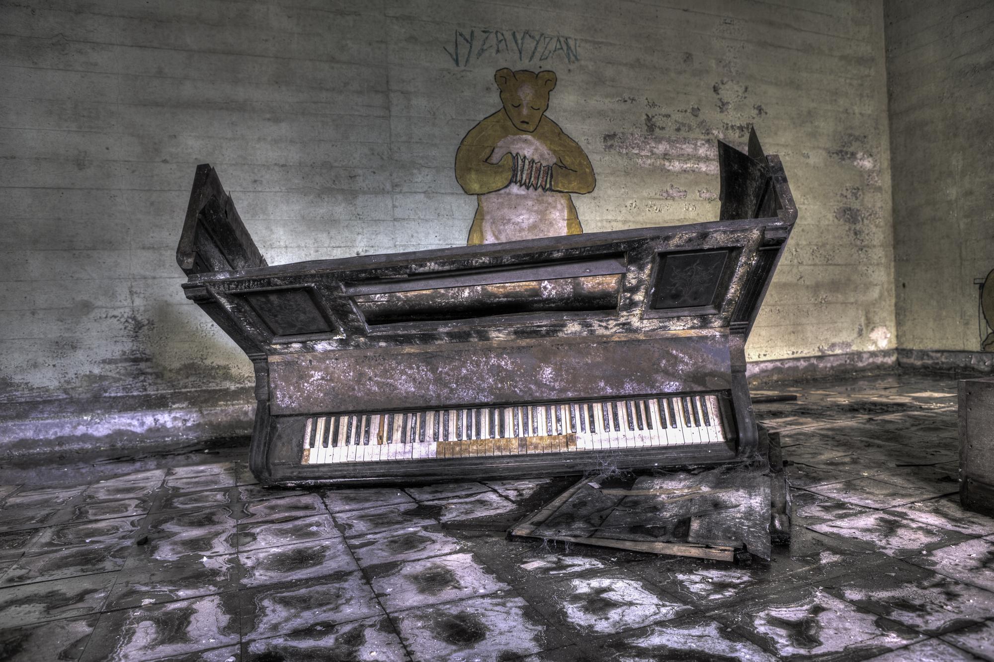 Bear Piano.jpg