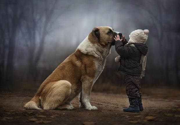"""Russian photographer Elena Shumilova only got into photography in early 2012, when she acquired her first camera. But if you were to look through her Flickr and 500px profiles, you would swear she had been doing it for much, much longer.  Her stunning photography revolves almost exclusively around photographs of her children and their animal friends on the family's farm. Adorable children, animals and surroundings that already offer so much beauty to Shumilova's lens combine into an enchanted world that is equal parts cozy and magical.  Speaking with  Bored Panda  , she explains that her photos are part intuition, part inspiration:  I largely trust my intuition and inspiration when I compose photos. I get inspired mainly by my desire to express something I feel, though I usually cannot tell exactly what that is.  Shumilova told Bored Panda that she shoots the images during the day, so as to not miss out on time she could be spending with her children, and then edits the images at night. She also says that she prefers natural light, but loves """"all sorts of light conditions – street lights, candle light, fog, smoke, rain and snow,"""" basically anything """"that gives visual and emotional depth to the image.""""  In order for the images to fit on the blog, we had to scale them down significantly, so if you like what you see be sure to head over to Shumilova's Flickr and 500px profiles and browse to your heart's content. Just make sure you have a warm blanket and some hot cider handy… these photos are likely to lull you into an extreme sense of coziness."""