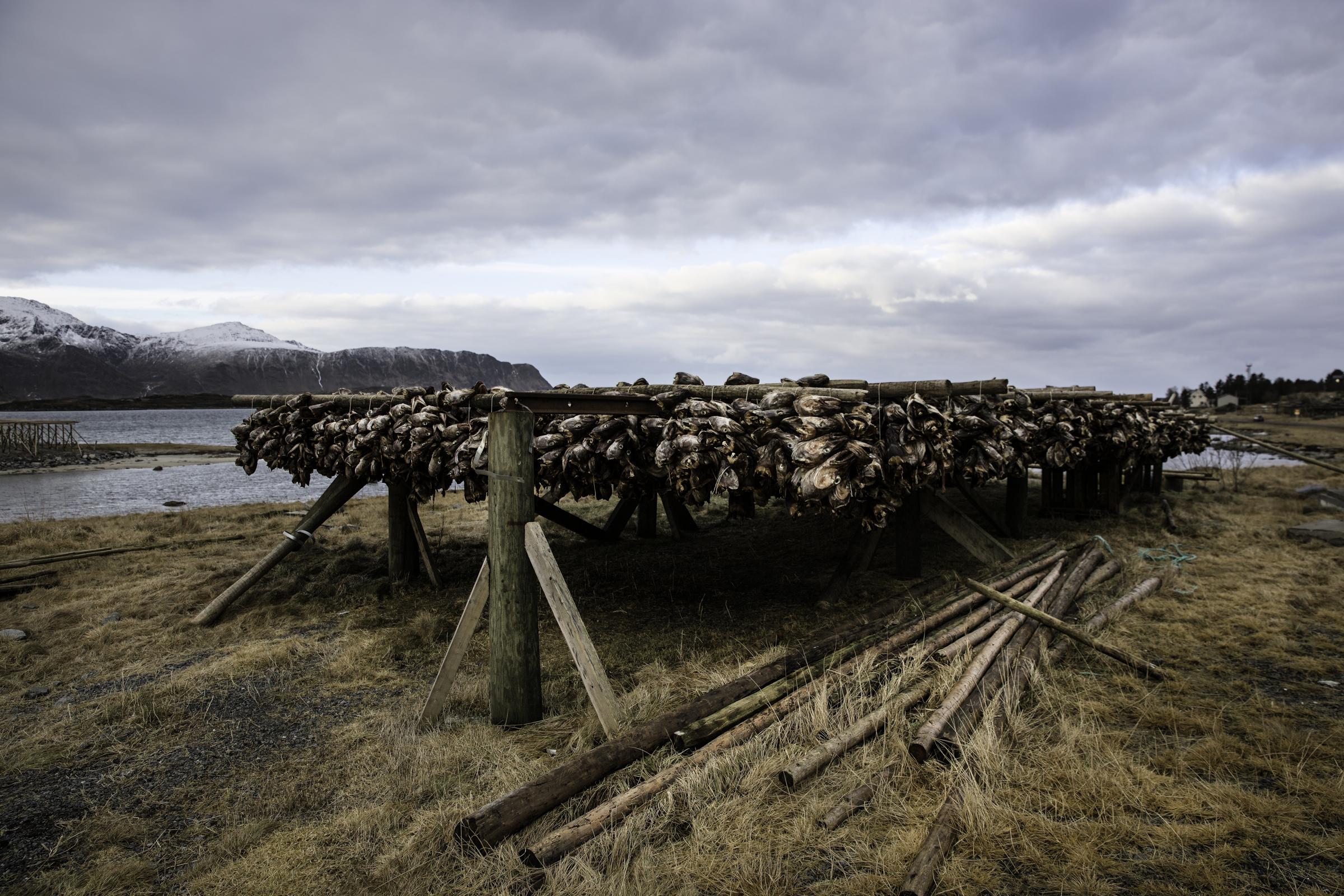TKeyes_TKeyes_Norway~0110.jpg